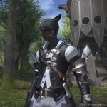 final fantasy XIV A Realm Reborn 22022013 AF
