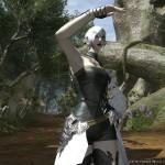 final fantasy XIV A Realm Reborn 22022013 AU