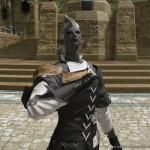 final fantasy XIV A Realm Reborn 22022013 AV