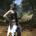 final fantasy XIV A Realm Reborn 22022013 AY