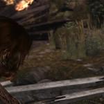 tomb raider 26022013amd effect
