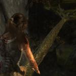 tomb raider 26022013amd effect h