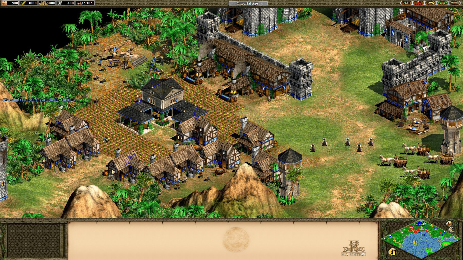 Age of Empire HD