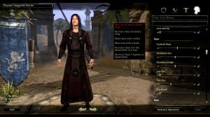 the-elder-scrolls-online-in-game-a-15042013