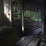 the last of us concept 17062013f