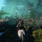 the-witcher-3-14062013c