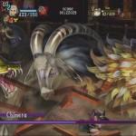 dragon's crwon 21072013o
