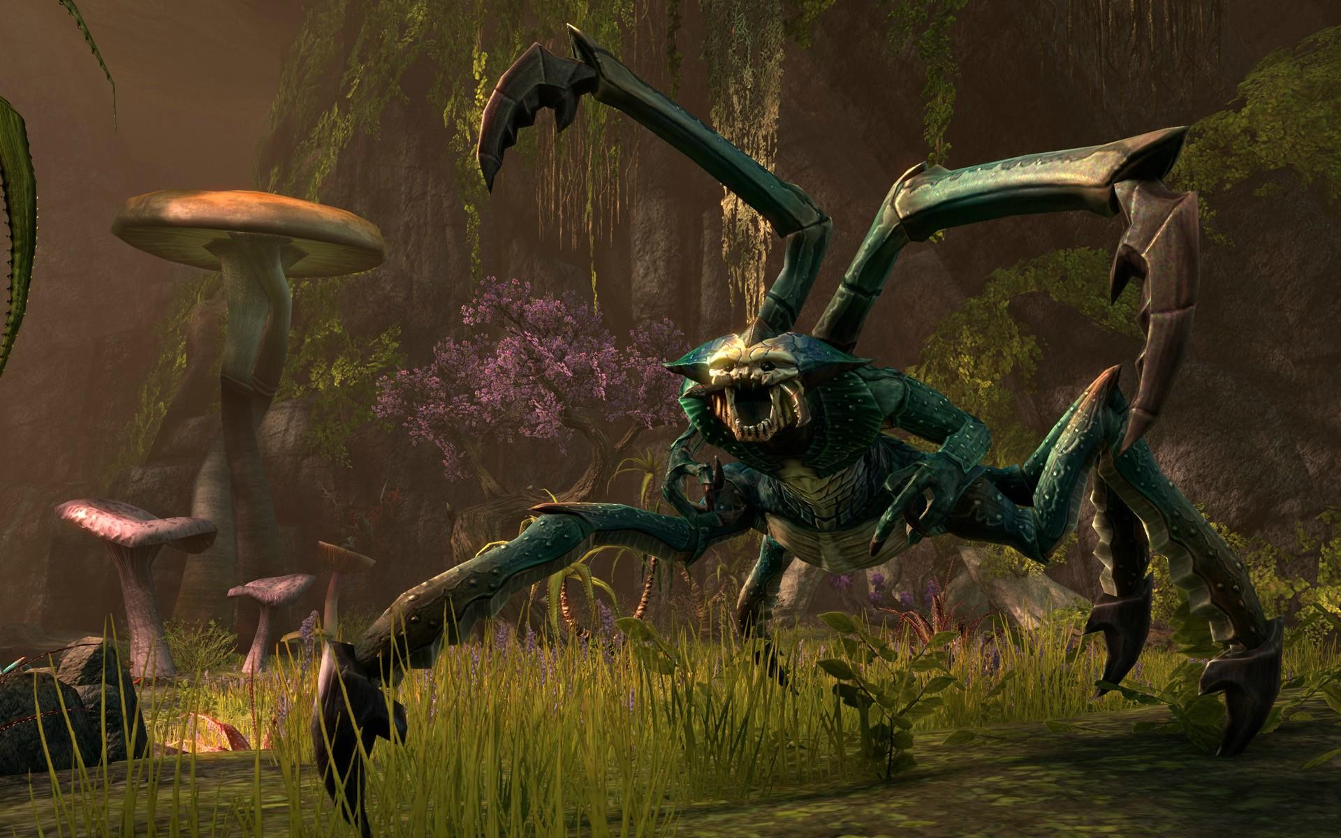 Elder-Scrolls-Online-bug