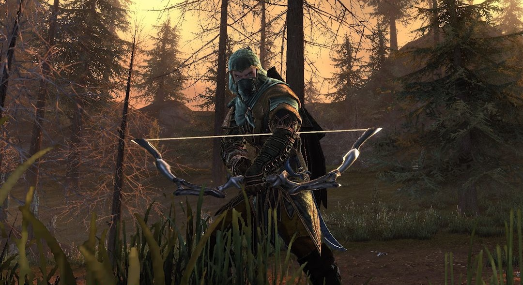 Neverwinter_hunter_ranger B