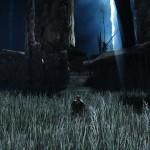 dark souls II 05122013q