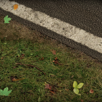 project cars 0101 27