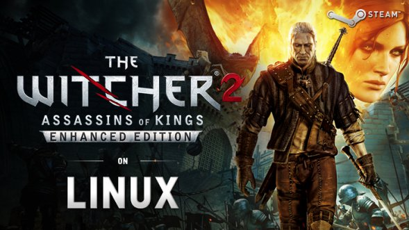 the witcher 2 enhanced edition linux