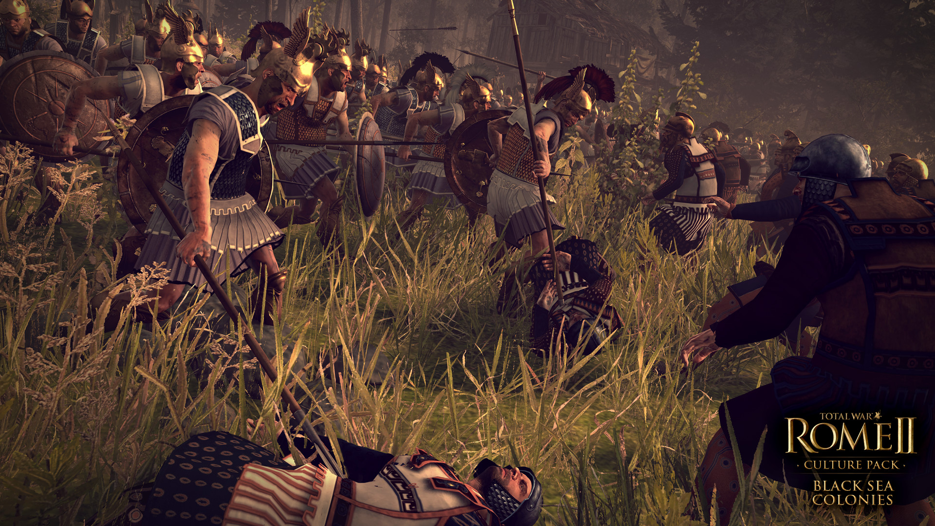 Total War Rome II Black Sea Colonies 2
