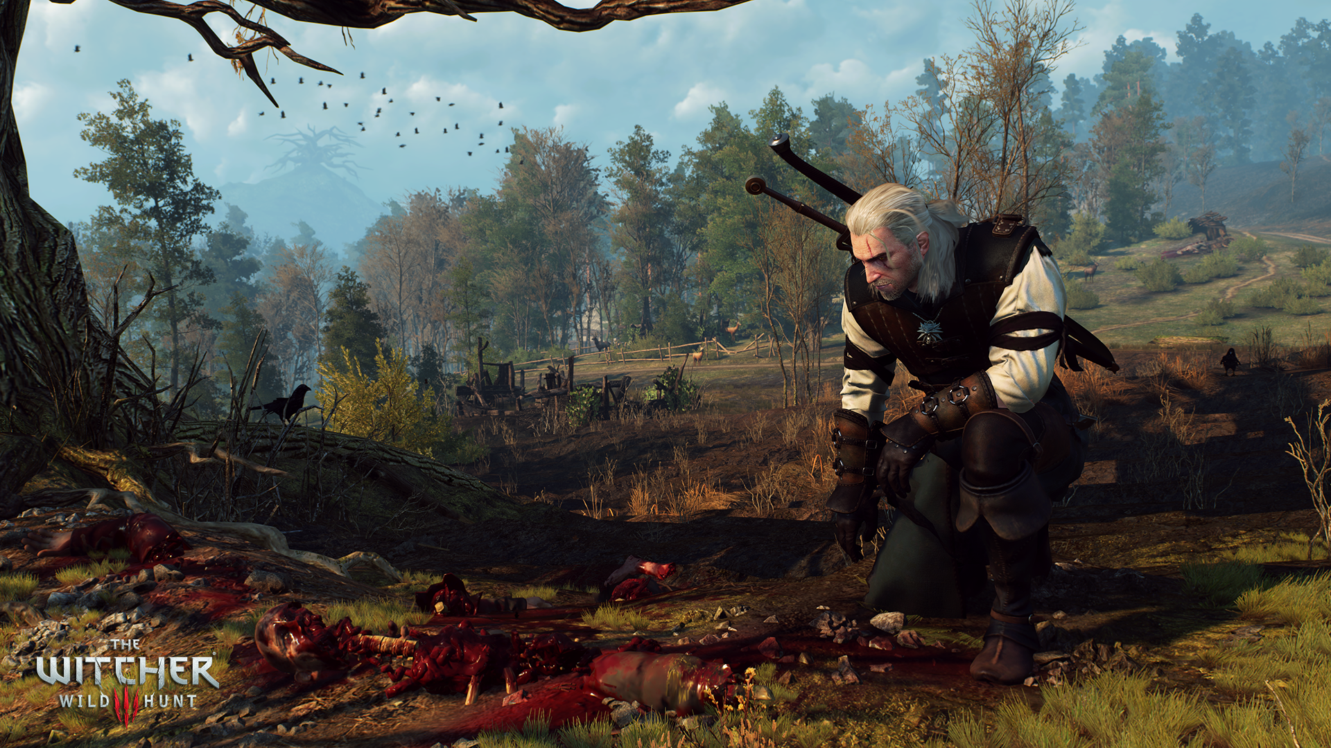 the_witcher_3_wild_hunt
