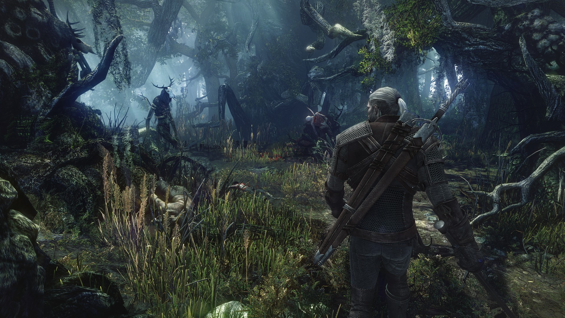 witcher3forest 1