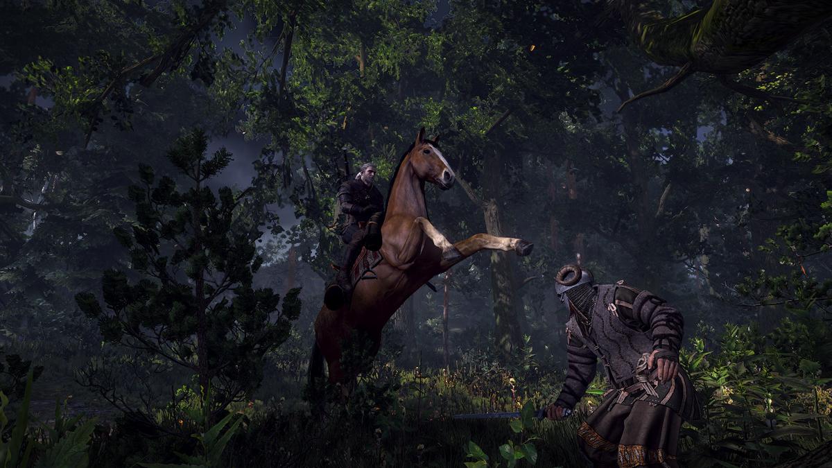 The-Witcher-3-Wild-Hunt-4