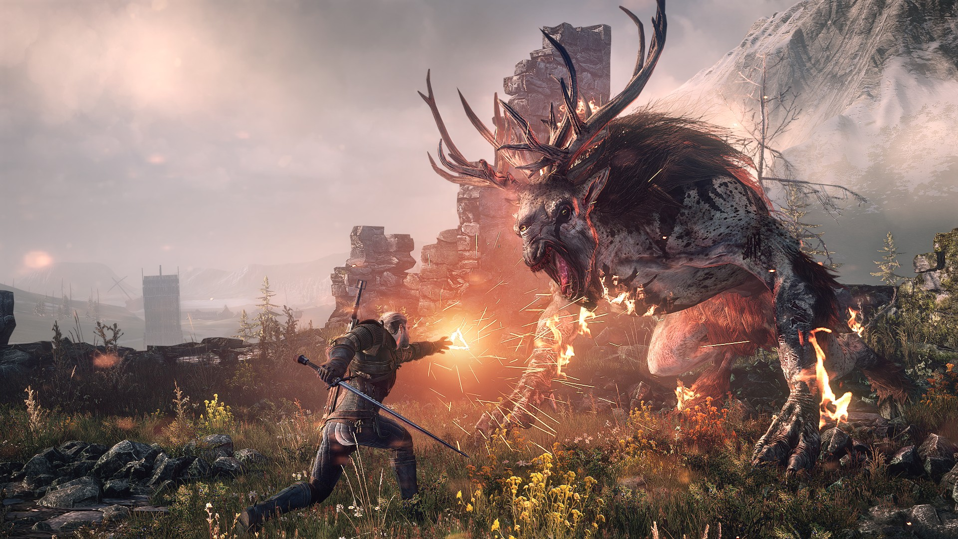 the-witcher-3-in game