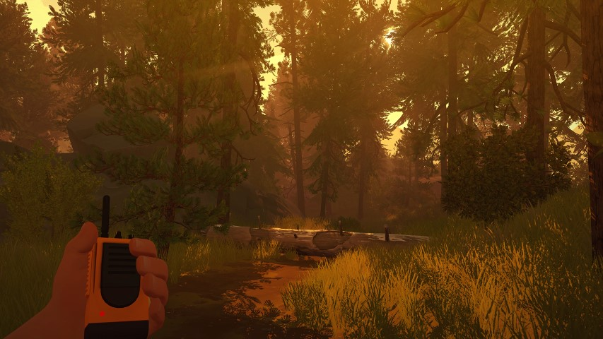 Firewatch-meadow-at-sunset