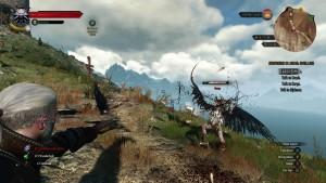 The Witcher 3: Wild Hunt, qualche dettaglio per la pach 1.11