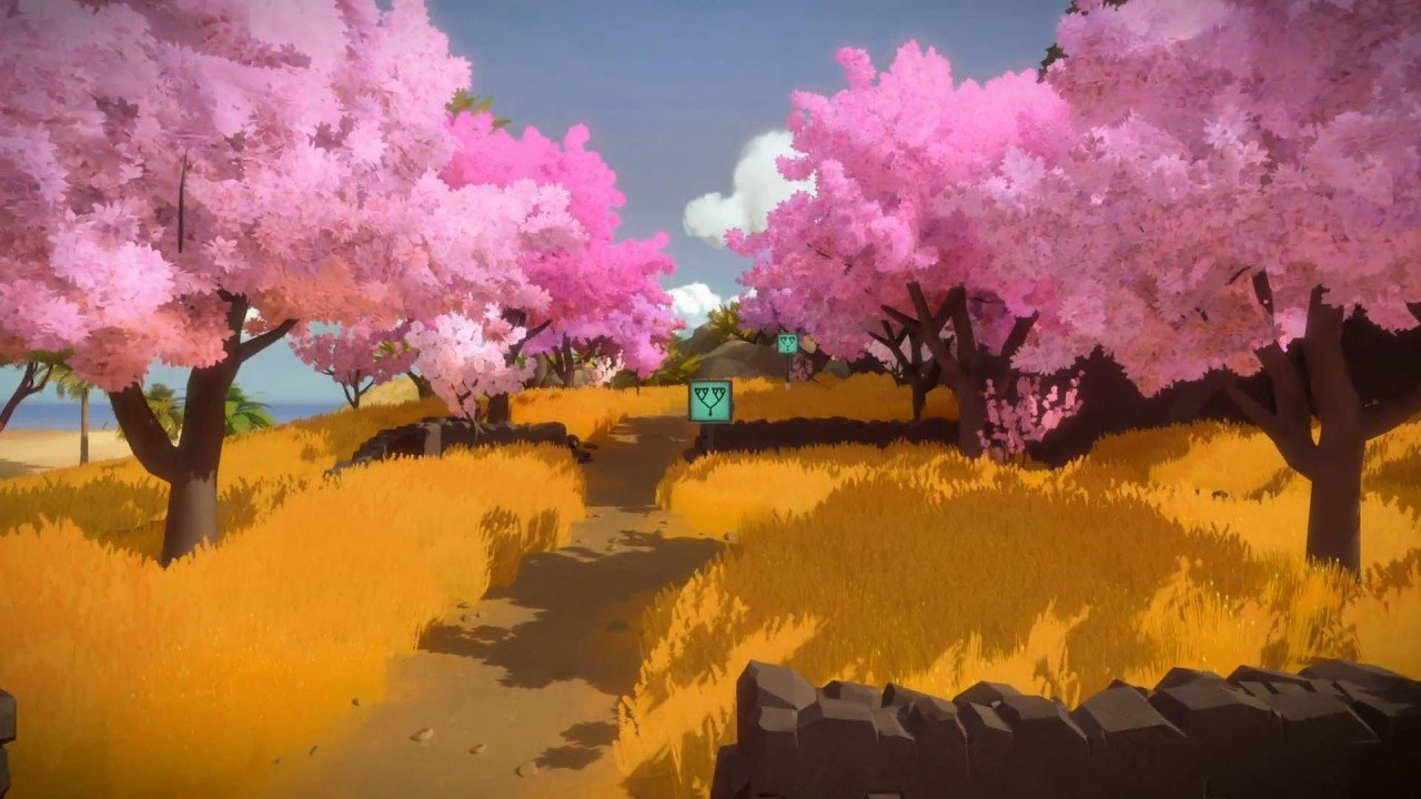 The Witness a