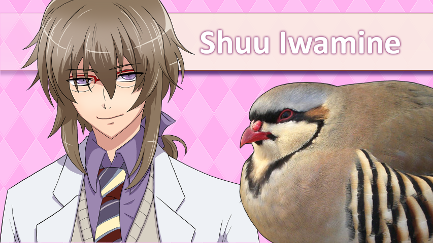 Hatoful Boyfriend – Screen 6