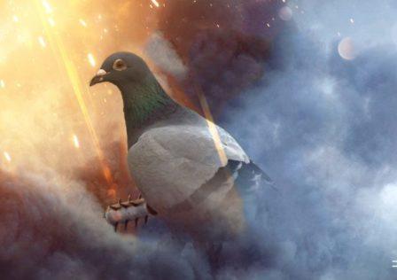 Non sottovalutate l'efficacia di un piccione