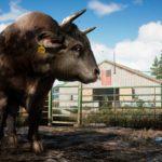 Bull_GOLD_1080p_1495792038