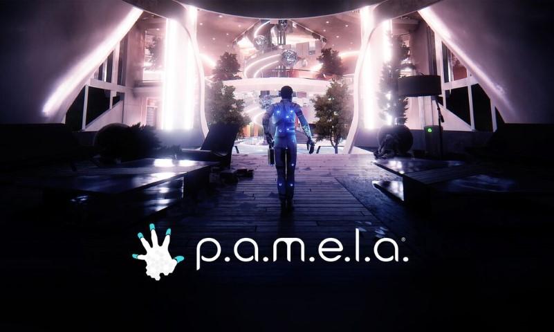 PAMELA Key Art