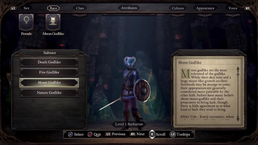 Pillars of Eternity C