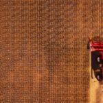 Real Farm_Screenshot_Harvesting 1