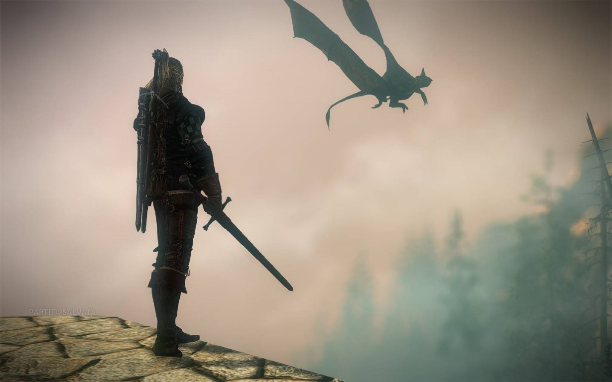 the witcher 2 screen 1