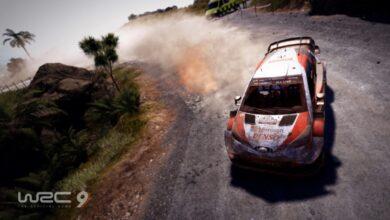 WRC-9-Nuova-Zelanda-C